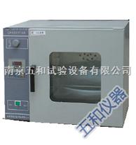 立式電熱恒溫鼓風干燥箱