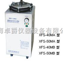 电热式压力蒸汽灭菌器|不锈钢灭菌器|压力蒸汽灭菌器