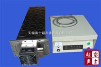 雷士高效能投入式超聲波清洗機