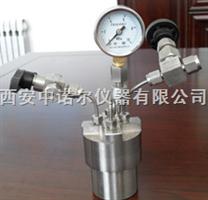 西安微型高压反应釜,反应器,反应仪,反应釜价格参数