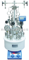 西安微型平行高壓反應釜,成都單層玻璃反應釜,反應器價格