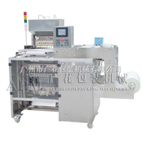 广州多列液体包装机