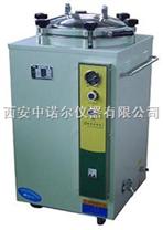 立体式蒸汽灭菌器 压力蒸汽灭菌器报价 真空泵 纯水蒸馏器