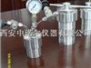 微型高压反应釜,催化反应釜、高压反应釜、聚合反应釜、均象反应釜、惰气反应釜、实验反应釜